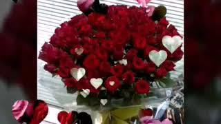 Патимат Гусейнова - розы