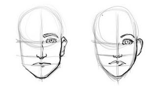 Drawing The Difference: Mens And Womans Faces