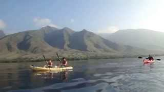 preview picture of video 'Kayak Olowalu 1-14-2015'