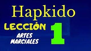 Tutorial de Artes Marciales  Guardia y Defensa Personal TÉCNICAS AIKIDO por Daniel Yaya Clase #1.