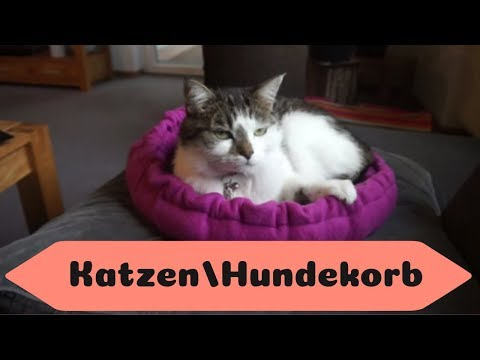 Katzen/Hundekörbchen nähen / kostenloses Schnittmuster