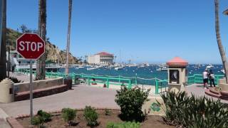Avalon Catalina Island Quick Day Trip