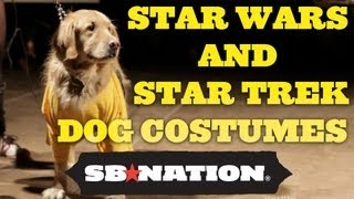 Star Wars vs. Star Trek Dog Costume Contest thumbnail