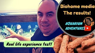 Biohome filter media review - The results!