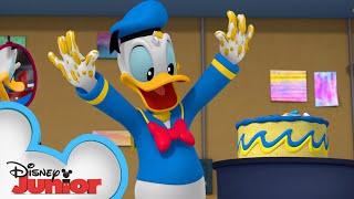 Donald's Birthday 🎂 | Mickey Mornings | Mickey Mouse Mixed-Up Adventures | Disney Junior