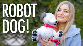 Sony's Robot Dog! A day with AIBO!