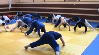 дзюдо. как   правильно    тренироваться .