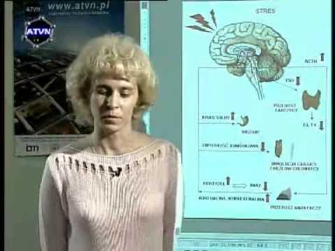 Ośrodki leczenia uzależnień alkohol Moskwie