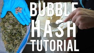 BEGINNERS ICE WATER HASH EXTRACTION TUTORIAL: Turning Shaky Trim Into Bubble Hash
