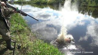 Обзор болотохода. Стреляем сазанов и ловим окуней на поплавочную удочку