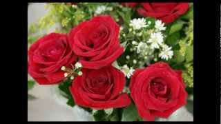 ANGELES AZULES - 20 Rosas HD