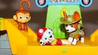 Мультики для детей Щенячий патруль Маршал и Трекер спасают Мэнди в джунглях Мультфильмы для детей
