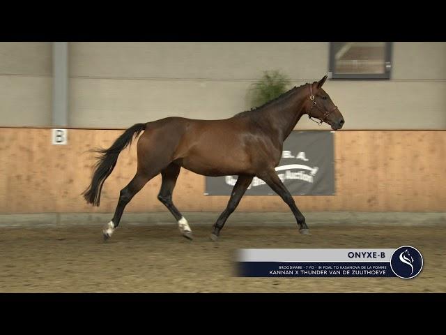 ONYXE-B