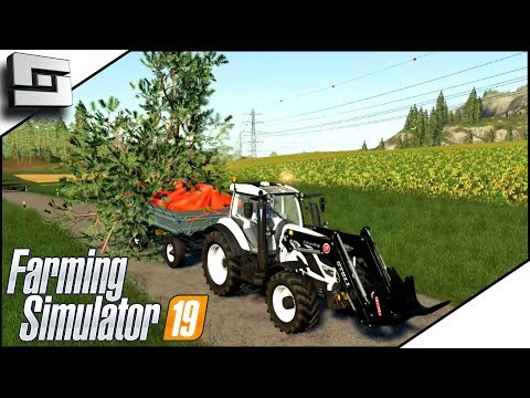 Chainsaw Forestry FAIL! – Farming Simulator 19 Gameplay E5