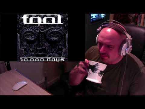 Tool - Vicarious (Reaction)