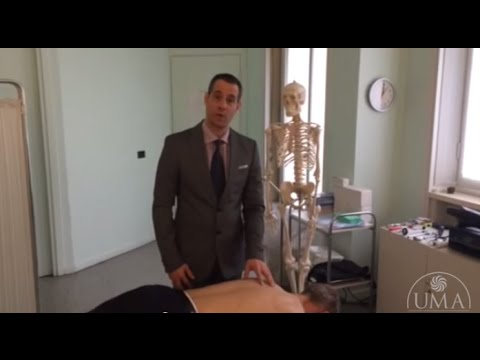 Ginocchio recensioni protesi articolare