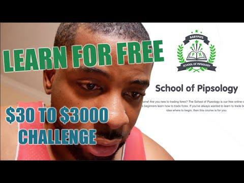 This How I Learned To Trade Forex For free | Beginner Forex Trader