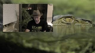 Zielony świat 02 – ZALWIT