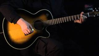 Guitar-View.com Ibanez AEL 30 IF vs. Takamine EG 540 SSC
