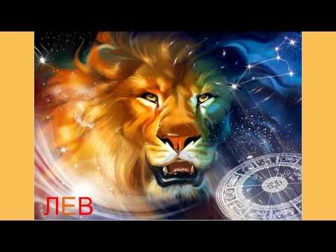 Гороскоп на 2016 год для водолея тигра женщина