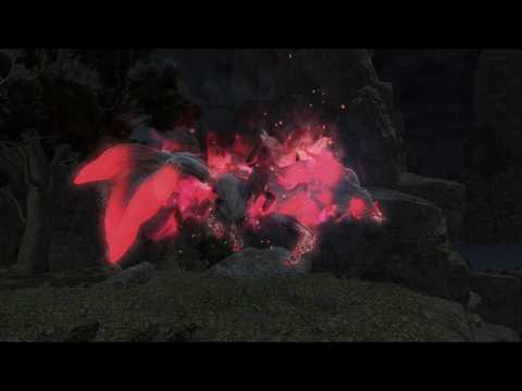 FFXIV - Nine Tails