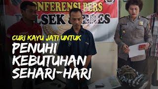 Curi Kayu Jati untuk Penuhi Kebutuhan Sehari-hari, Pria di Solo Terancam Penjara 7 Tahun