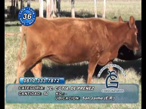 Lote Vc CGP - San Jaime - Entre Rios