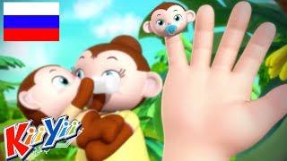 детские песни   Семья пальцев + Еще!   KiiYii   мультфильмы для детей