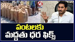 AP CM YS Jagan Announce MSP To Farmers For All Crops | V6 News