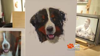 WATCH: How She Makes Puppy Portraits!