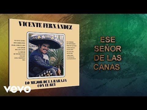 Vicente Fernández - Ese Señor de las Canas (Cover Audio)