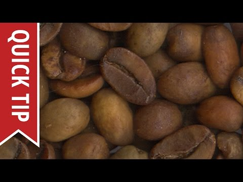 Quick Tip: Arabica vs. Robusta Coffee Beans