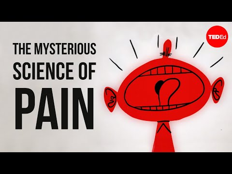 How Our Pain Mechanism Works