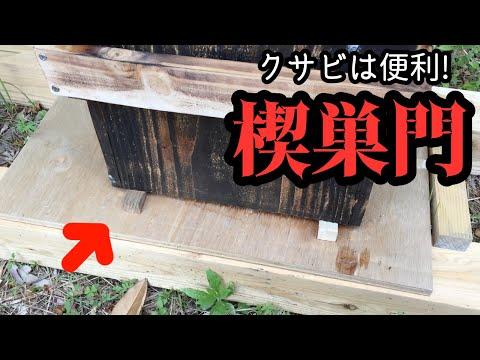 , title : '楔で巣門を作る!クサビは便利【オタク養蜂】~日本ミツバチ~