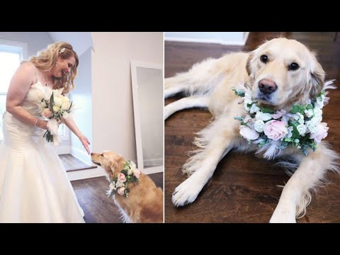 Bride Makes Dog Flower Girl at Wedding: 'She's Just Family'