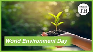 World Environment Day 2020: Time for nature - Download this Video in MP3, M4A, WEBM, MP4, 3GP