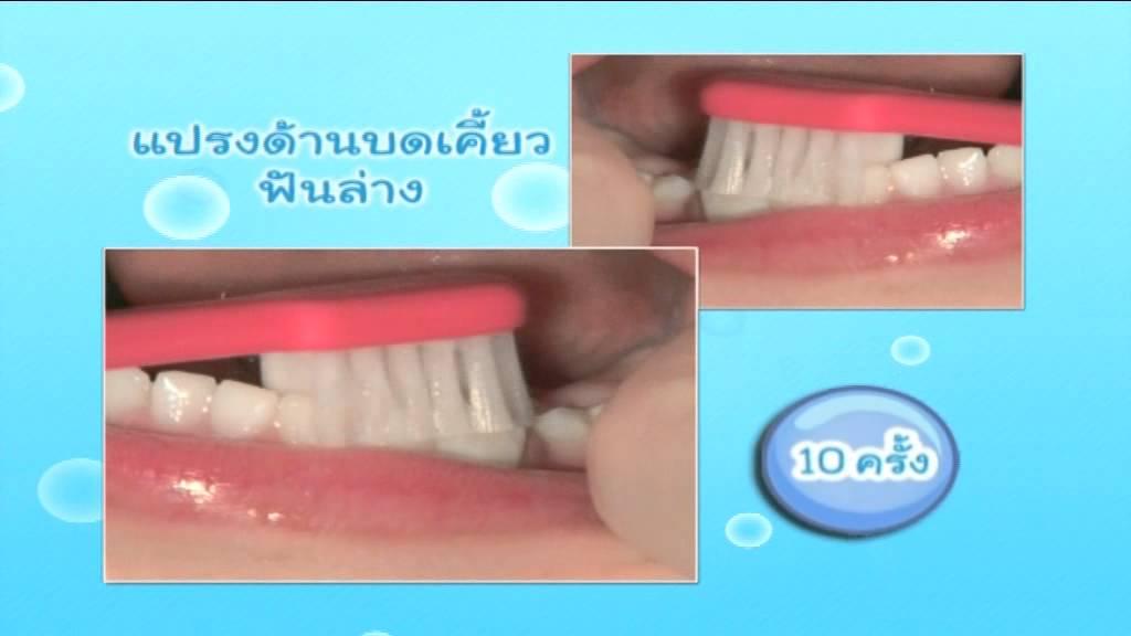 ลูกรักฟันดี เริ่มที่ซี่แรก การแปรงฟันเด็กอายุ 1.5 - 3 ปี