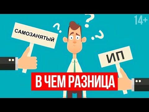 Самозанятый или ИП: Что выбрать и на что обратить внимание?  Светлана Толкачева 14+