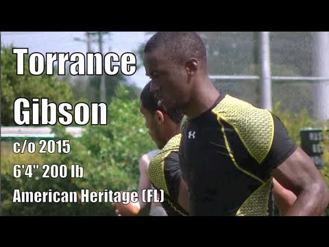 Torrance-Gibson