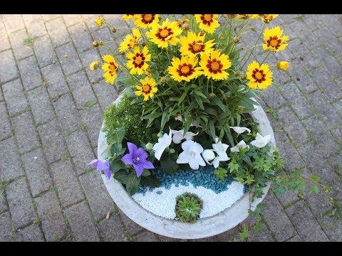 DIY Dekorierte Blumenschale aus Beton/Concrete Flowerpots-Planters/ Beton Çiçeklikler - Saksılar