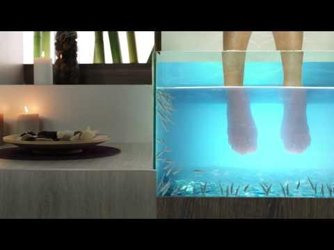 Comme se développe vite le microorganisme végétal sur les ongles des pieds