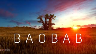 The Majestic Baobab Tree | Learn Facts about Tree and Baobab Fruit