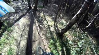 preview picture of video 'Wharncliffe Woods Mountain Biking (Fast Track) HD'