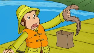 Curious George George and The One that Got Away  Kids Cartoon  Kids Movies | Videos For Kids