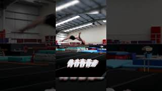 How many humans can you backflip over?! Ft. Nile Wilson