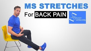 Stretches For Multiple Sclerosis | MS Workouts (Great For Lower Back Pain!!!)