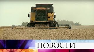 Д.Патрушев: Урожай зерновых в этом году будет выше среднего и составит около 105 миллионов тонн.