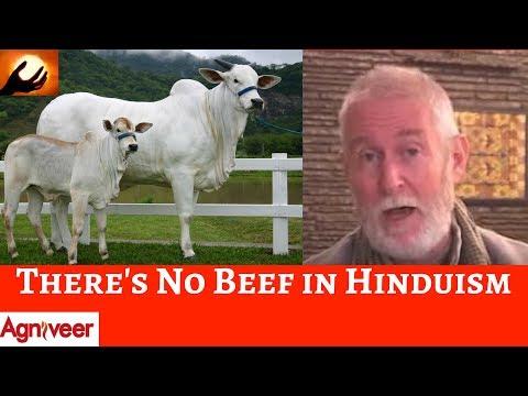 ºº Free Watch Holy Cow Swami