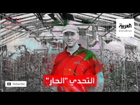 العرب اليوم - شاهد: مزرعة لأقوى أنواع الفلفل الحار في العالم تجذب الزوار في إنجلترا