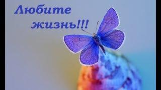 Любите жизнь! Позитив для друзей.